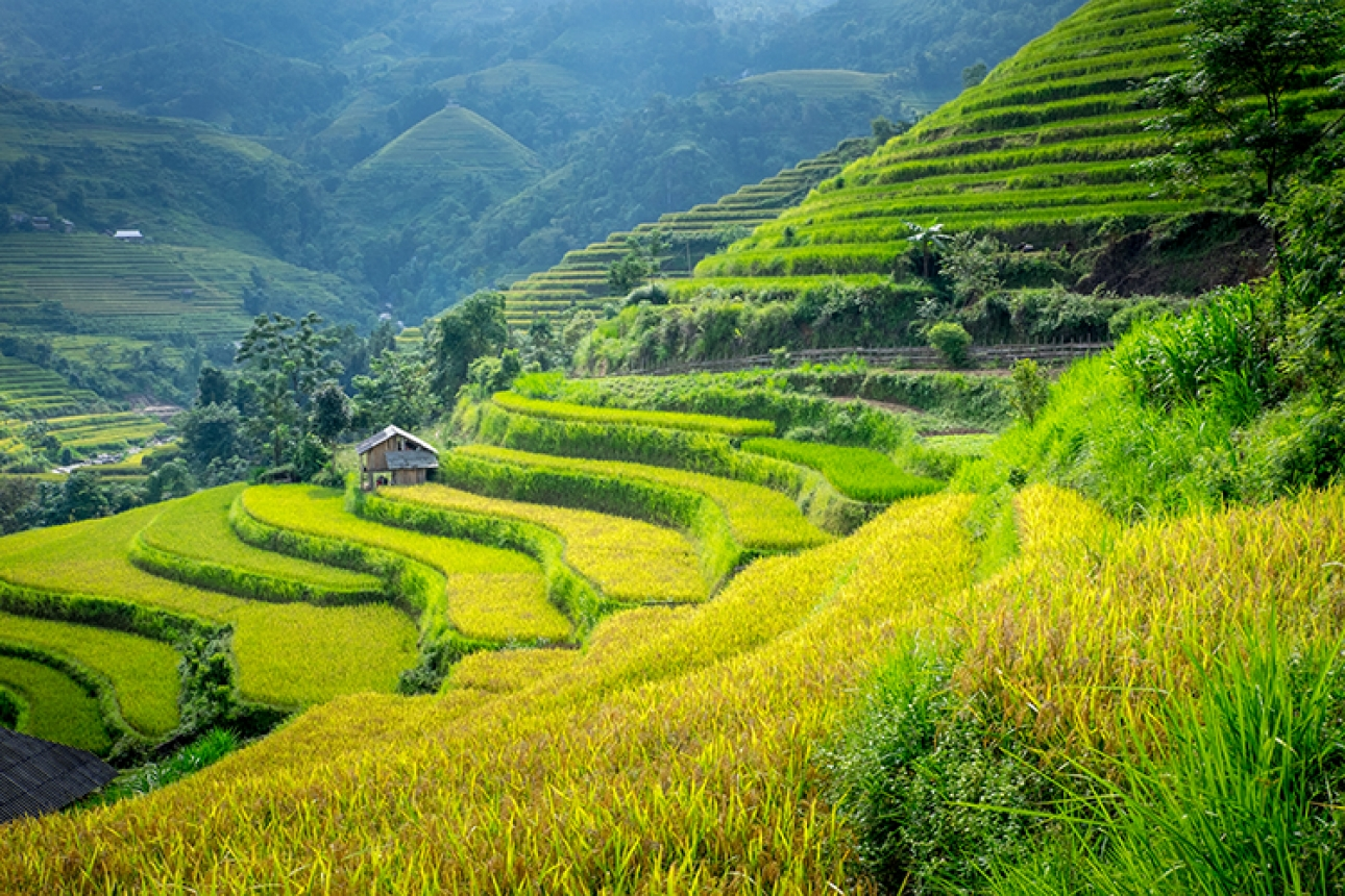 2018 fam trips to Southeast Asia, join our partner Trails of Indochina!
